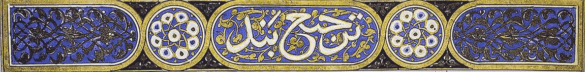 Reading Rumi.com