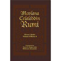 Divan-i Kebir, Volume 9/Meter 9